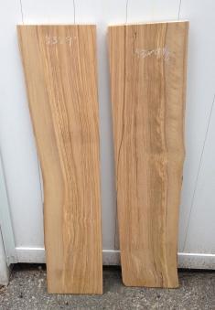 Olive Wood 01