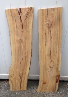 Olive Wood 02